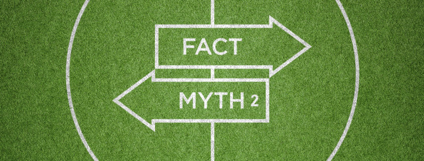 artificial turf myths